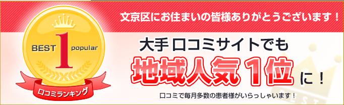 文京区にお住まいの皆様ありがとうございまず!大手口コミサイトでも地域人気が1位になり、毎月多数の患者様がいらっしゃっています。
